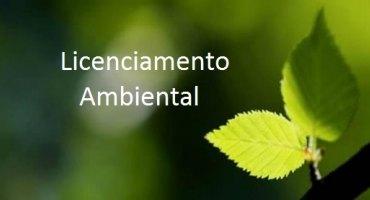 lambiental (1)1